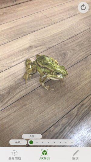 Froggipedia安卓版图1