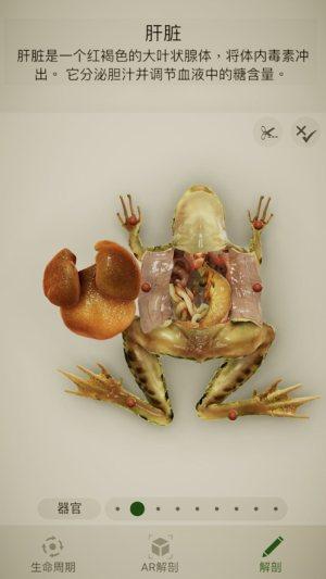 Froggipedia安卓版图2