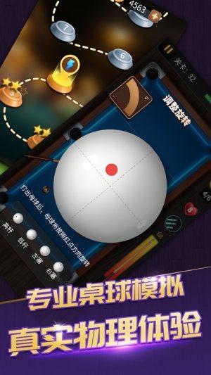 桌球之路黑8王者3D游戏图2