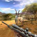 狩猎竞赛破解版