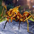 解救星际小蚂蚁游戏