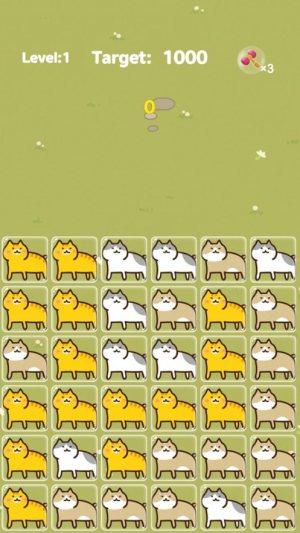 Funny Cat游戏图4