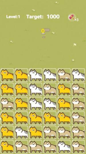 Funny Cat游戏安卓版图片1