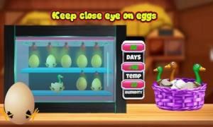 养鸭场养殖游戏图4