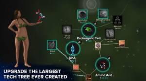 地球进化模拟器破解版图1