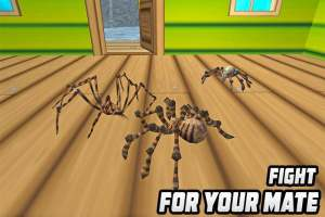 干掉蜘蛛模拟器手机版图2