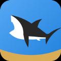 皇家鲨鱼队游戏