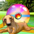 幼犬GO游戏