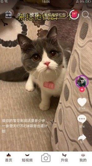 暖暖视频免费大全中文字幕图1