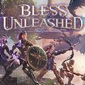 Bless Unleashed官网steam中文版 v1.0