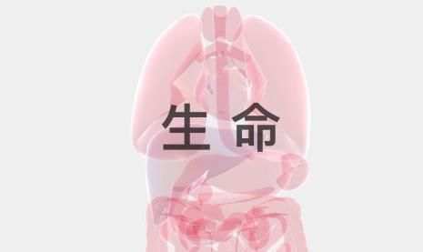 生命life游戏玩法攻略 中文版下载链接[多图]