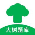 大树题库App