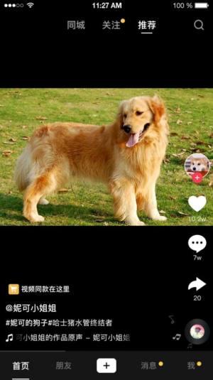 VGM短视频app图1