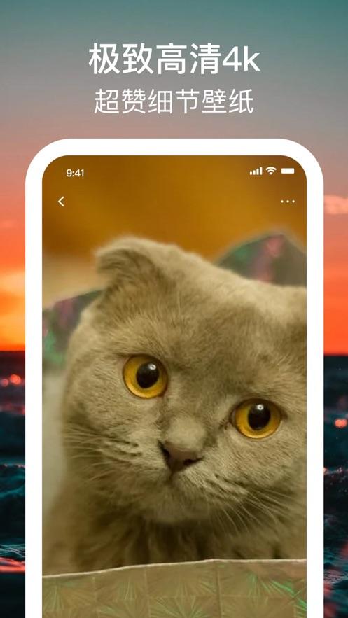 手机壁纸4K APP官方版图2: