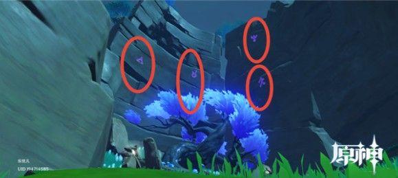 原神鹤观岛迷雾宝箱位置大全:鹤观岛隐藏宝箱位置坐标分享[多图]图片2