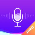 百变变声器pro app
