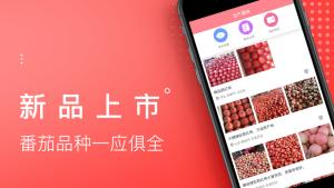 番茄生活社区App图2