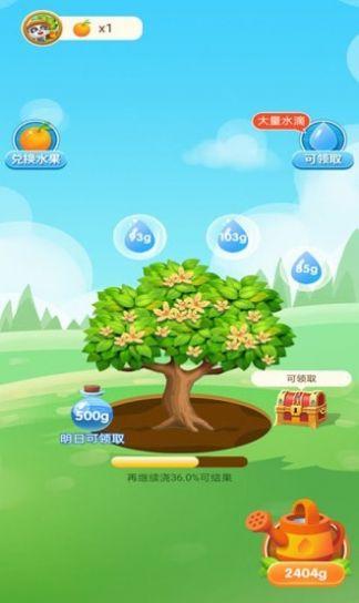 宝宝来种树游戏领红包版图1: