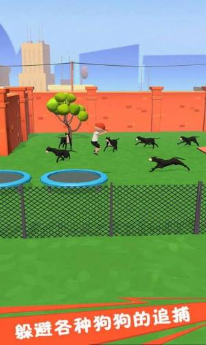 奔跑吧狗蛋游戲圖3