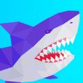 鲨鱼横冲直撞最新版