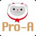 Pro-A Tech軟件