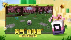 熊孩子世界游戏图3