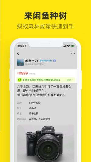 闲鱼app最新版图3