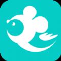 飞鼠客服app