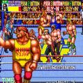世界专业摔角游戏最新安卓版 v2