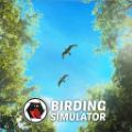 观鸟模拟器最新版