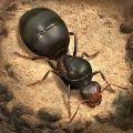 蚂蚁地下王国破解版