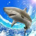 野生鲨鱼垂钓中文版