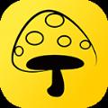 蘑菇丁App官方最新版