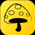 蘑菇钉app