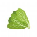 优汇菜商家版app