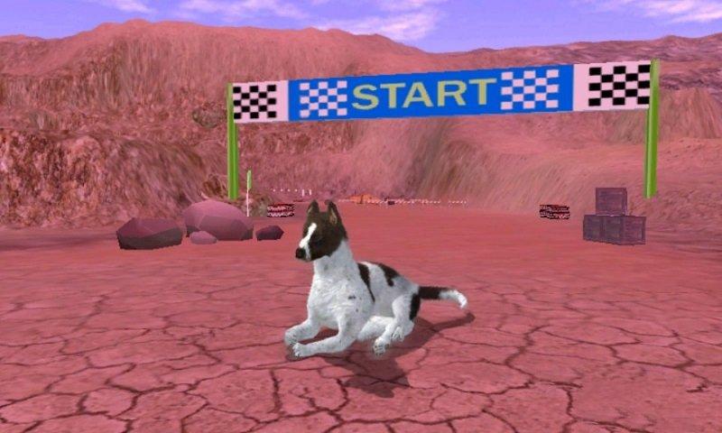猎犬模拟器游戏官方安卓版图1: