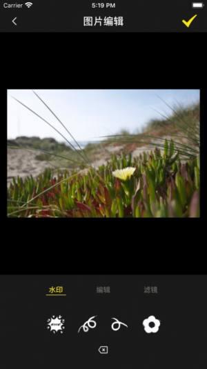 悠凛盒子app手机版图片1