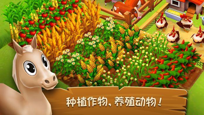 全民农家乐游戏合集