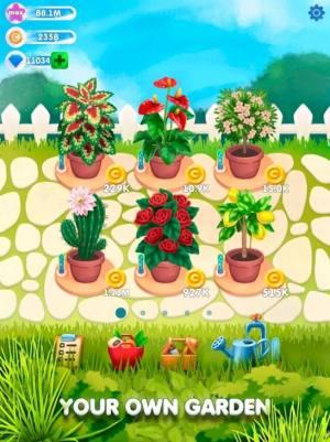 闲置植物花园红包版图3