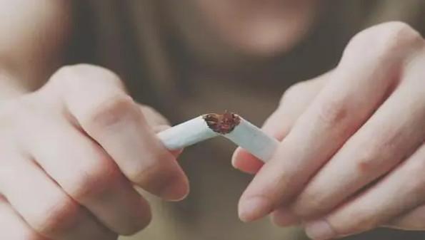 戒烟app合集