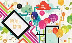 当程序化遇上社会化??有米的跨维营销实践[多图]