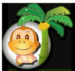 保护香蕉树