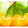 快乐买水果