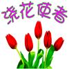 浇花使者V1.0