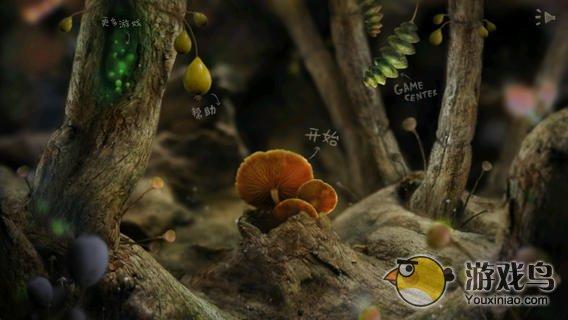 小甲虫回家图5: