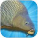 模拟钓鲤鱼