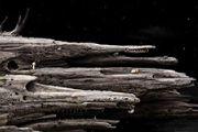 《银河历险记3》灵动唯美银河系宣传片