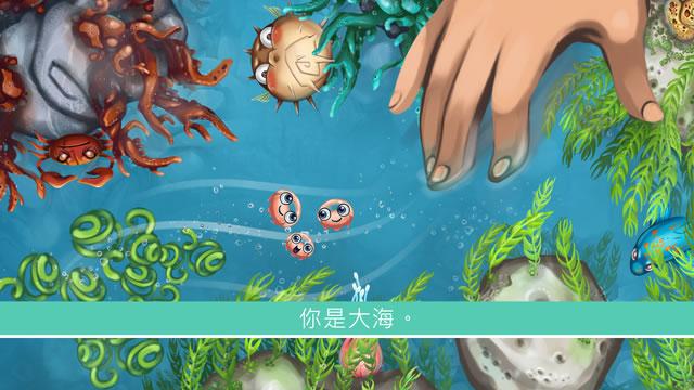 水母暗礁图5:
