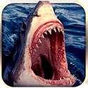 愤怒的大鲨鱼2016