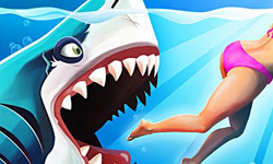 周四來了:老司機鯊魚帶你吃掉泳裝美女